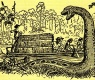 Fawcett Shooting Giant Anaconda