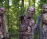 Tv Show Walking Dead