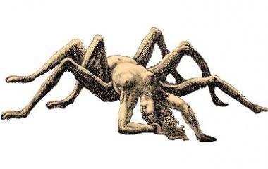 Arachne the spider