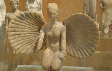 Petite Aphrodite