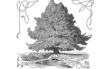 The world tree Yggdrasil