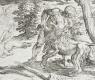 Hercules And The Nemean Lion