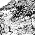 Man-Eating Tree