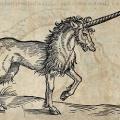 Unicorn Woodcut
