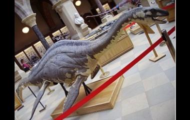 Model of Loch Ness Monster