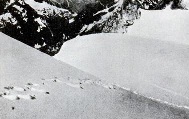 1937 yeti footprints
