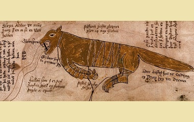 Fenrir bound manuscript